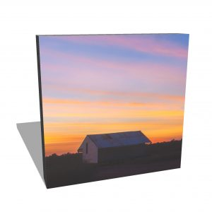 Square Canvas Prints